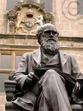 Darwin photo